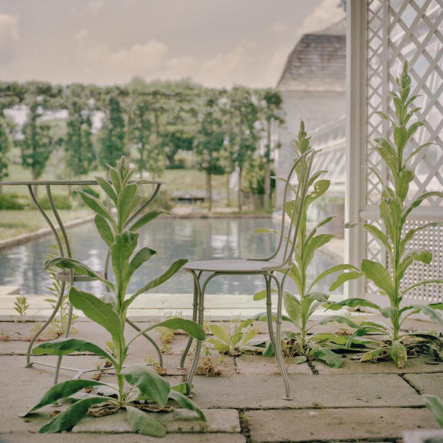 Bunny Lambert Mellon's gardens in Upperville, Virginia, 31 May